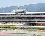 週末のお供に -データ解析- 函館競馬場 ダート 2400m